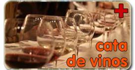 Cata de Vinos despedidas en Morella